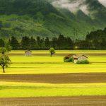 Declaração do Imposto sobre a Propriedade Territorial Rural