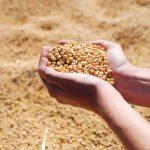 ICMS para o agronegócio